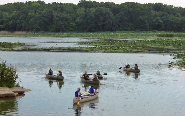 Explore the Estuary by Canoe or Kayak