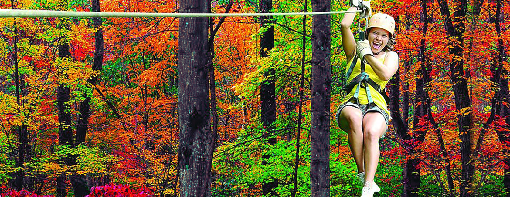 Tree Tops Zip Lining