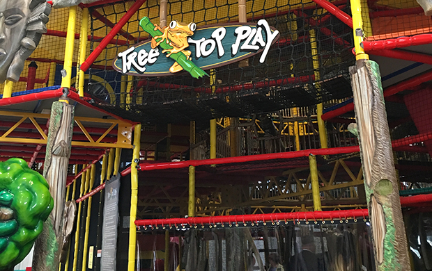 The Jungle Junction Indoor Playground & Party Center